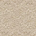 Connoisseur Carpet Cleaning Santa Cruz Ca